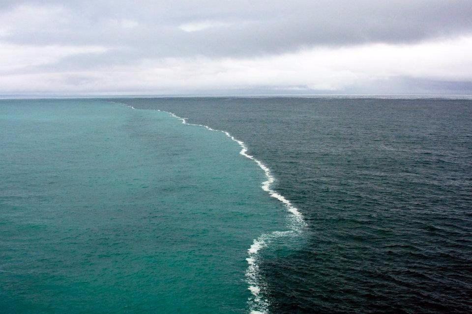 данных семян встреча двух морей фото распространение получил пластиковый