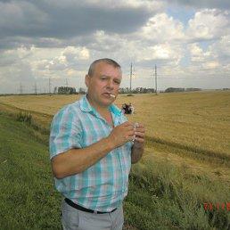 Alexandr, 52 года, Рошаль