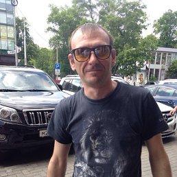 Андрей, 41 год, Светлогорск