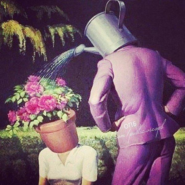 сайт садовник влюбился хозяйку расплачиваются
