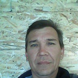 Фрид, 49 лет, Епифань
