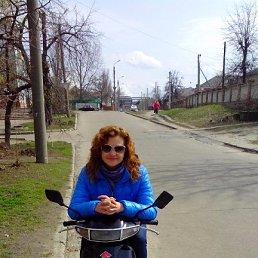 Екатерина, 37 лет, Александрия