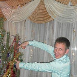Андрей, 35 лет, Атяшево