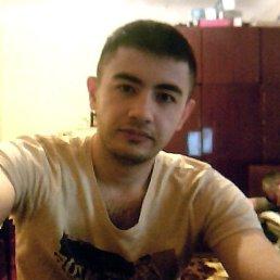 Алишер, 30 лет, Барнаул