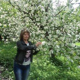 Татьяна, 49 лет, Кингисепп