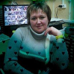 татьяна, 44 года, Краснозаводск
