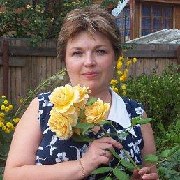 Лариса, 50 лет, Краснозаводск
