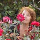 Среди розария в Крыму Домашняя обстановка.
