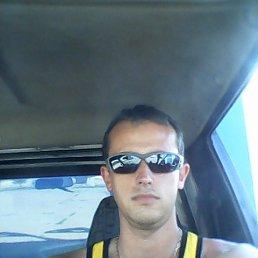 Александр, 28 лет, Волгоград