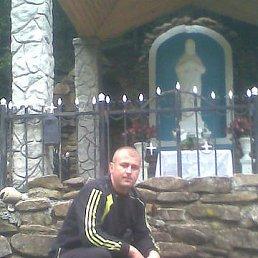 Анатолій, 43 года, Броды