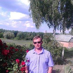 Коля, 42 года, Казатин