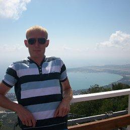Алексей, 32 года, Крестцы