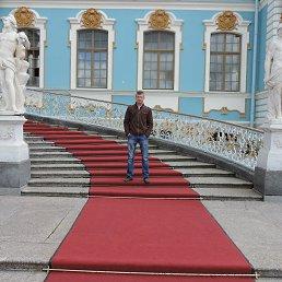 Николай, 43 года, Серебряные Пруды