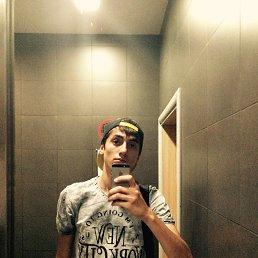 Shamil, 22 года, Грозный