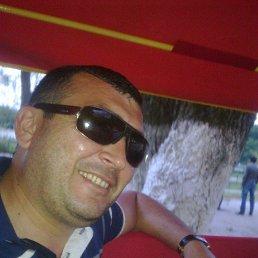 Арзу, 43 года, Березно