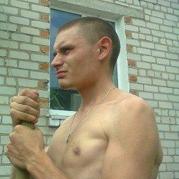 Иван, 29 лет, Коренево