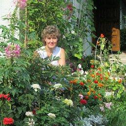 Ольга, 58 лет, Бежецк