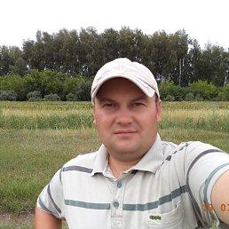 андрей, 38 лет, Волчиха
