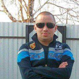 Алексей, 36 лет, Раменское