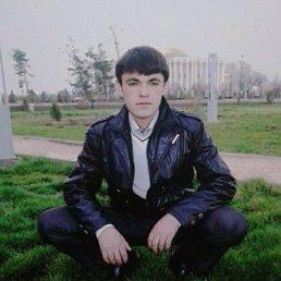 Ramiz, 31 год, Щелково-7