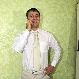 Александр, 29 лет, Ставрополь