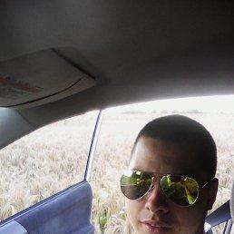 Aleksandr, 28 лет, Любань