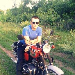 Егор, 25 лет, Кировск