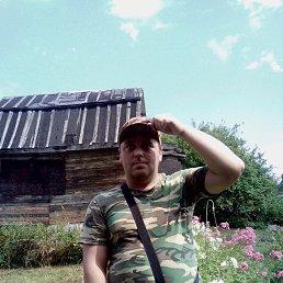 Евгений, 40 лет, Мышкин