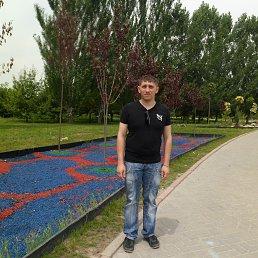 Фото Павел, Алматы, 31 год - добавлено 16 июля 2015