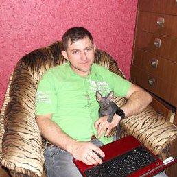 николай, 42 года, Новотроицк