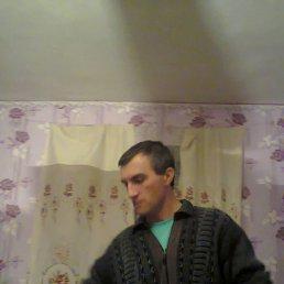 Олег, 43 года, Оржица