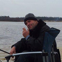 Юрий, 58 лет, Кшень