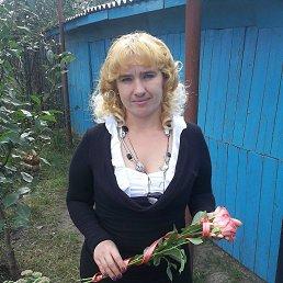 Елена, 37 лет, Шостка