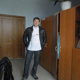 Артур, 28 лет, Змеиногорск