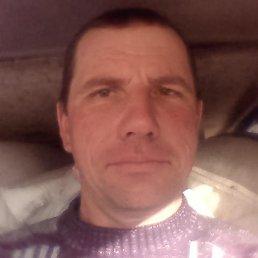 Николай, 50 лет, Бобринец