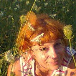 Света, 52 года, Новоград-Волынский