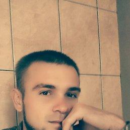 Рома, 29 лет, Ковель