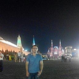 Михаил, 28 лет, Запорожье