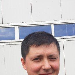 Сергей, 37 лет, Ступино