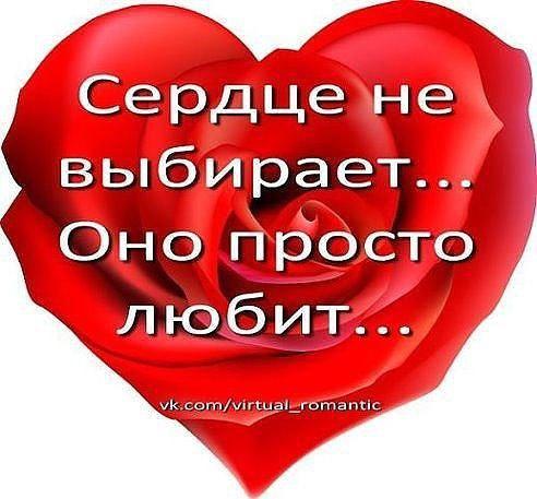 Любовь – это чувство, возникающее в сердце без нашего ведома. Его нельзя запрограммировать, его ...