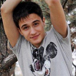 Игорь, 28 лет, Кулунда