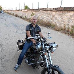 Алексей, 28 лет, Энергодар