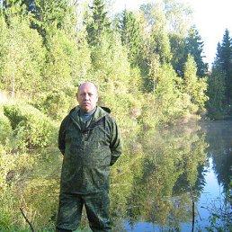 Сергей, 65 лет, Андреаполь