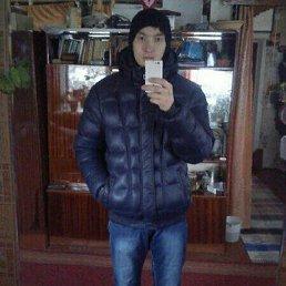 Артур, 28 лет, Лысьва
