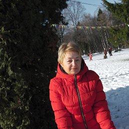 Елена, 55 лет, Тула