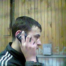 Дмитрий, 26 лет, Ордынское
