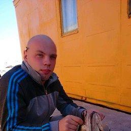 Виталий, 28 лет, Викулово