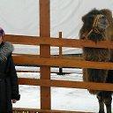 Фото Аленушка, Канаш, 51 год - добавлено 13 декабря 2015