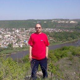 Руслан, 43 года, Заставна