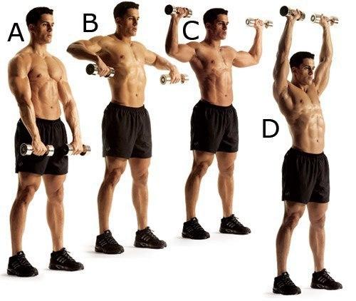 Как накачать плечи в домашних условиях - Street Workout | 422x500